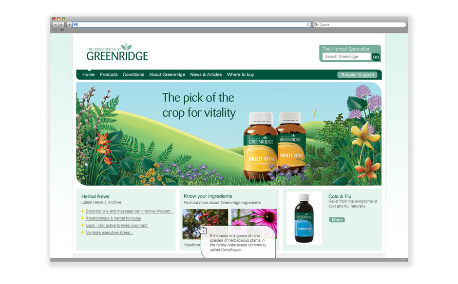 Greenridge web design