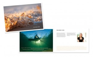 Tim_Cullen_brochure by shoebox creative